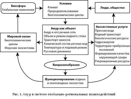 Амур в системе глобально-региональных взаимодействий
