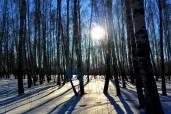 Фото: В.Г. Александров