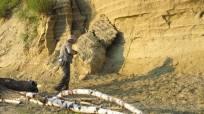Ученые открывают тайны Белинской террасы