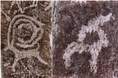 Краснокнижные животные в петроглифах  Алтая