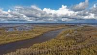 На Васюганском болоте будет создан заповедник