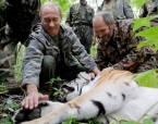 Крестный тигр не посрамил Владимира Путина