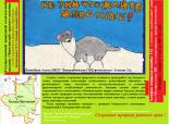 """Ёлкин И., МКОУ """"Новошипуновская СОШ"""""""