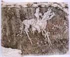 Лошадь и олень