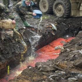 Сохраним лосося и очистим берега рек Сахалина
