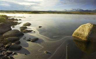 Метаморфозы золотой пыльцы - Фото Игоря Хайтмана
