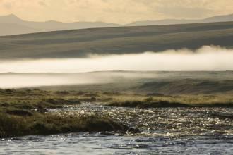Раннее утро на реке Кальджин - Фото Игоря Хайтмана