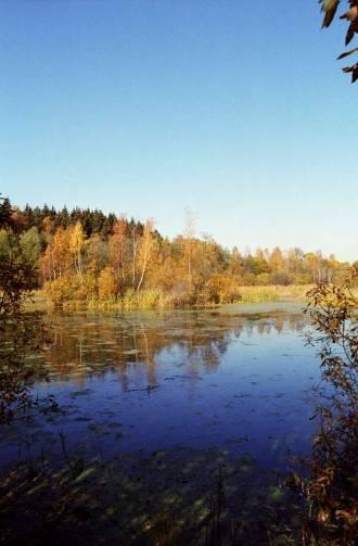 Река Липка -  приток реки Москва