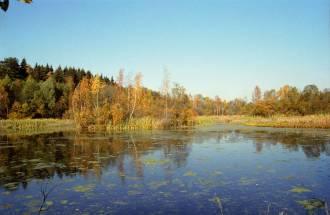 Река Липка