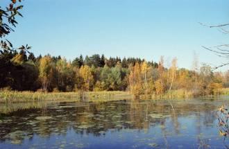 Липка -  приток реки Москва