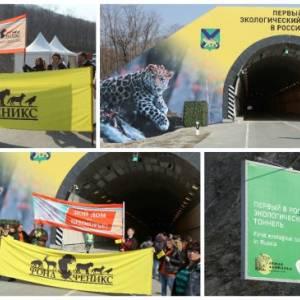 Открыт первый в России экологический тоннель