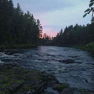 Километры и километры карельских лесов