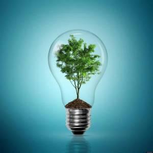 Альянс Франсез  объявляет  экологический конкурс