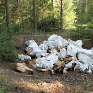 После сигнала ОНФ в Кировской области ликвидирована крупная свалка в лесу