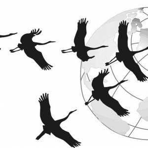 Сайты экологического движения - Эко-коллекция