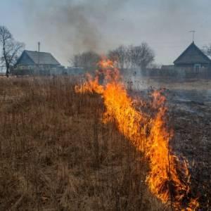 Люди плакали, сгорали, но продолжали жечь траву...