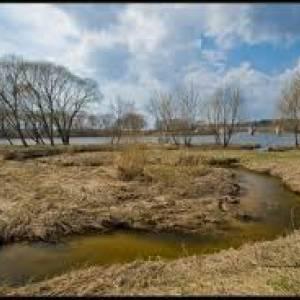 Публичные слушания по проекту застройки поймы реки Липка