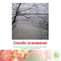 «Взаимодействие общественности в Арктическом регионе»