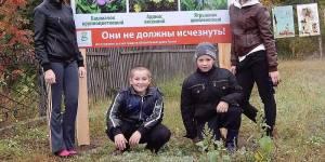 Хранители луга и леса