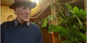 Владимир Левченко: В экосистемах нет начальников, а живут они себе прекрасно столетиями