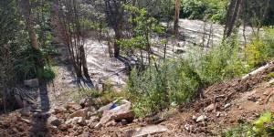 Забетонированный лес в поселке Чистые Пруды заваливают строительными отходами
