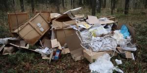 Активисты ОНФ проинформировали надзорные органы о свалках медицинских и строительных отходов в кировском лесу