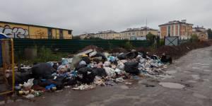 Эксперты ОНФ добились ликвидации двух свалок в Новой Москве