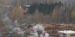 В Кирове незаконный крематорий занимался уничтожением останков домашних животных