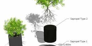 Образование почв под озеленение на засоленных территориях