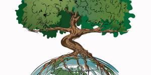 Асиновский детский дом приглашает всех жителей на праздник «День леса»