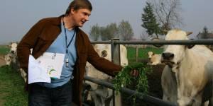 Экологическое сельское хозяйство: есть или не есть?