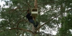 """В Омской области строят """"социальное жилье"""" для хищных птиц"""