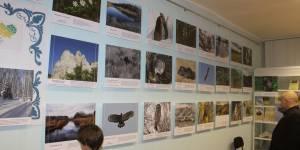 Приглашаем посетить фотовыставку «Природа Салаира»