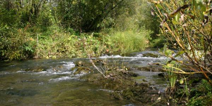 Речная экспедиция по Издревой
