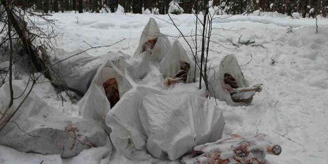 Кировские активисты ОНФ обнаружили свалку биологических отходов в лесу