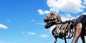 Вымирание видов. Скелет динозавра на фоне неба
