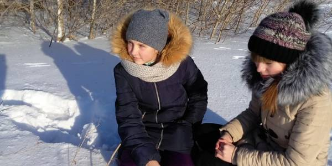 Зимние загадки четвероногих соседей