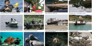 Охрана и изучение экосистемы Фуругельма – самого южного острова России