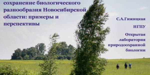 Экологическое волонтерство и сохранение биологического разнообразия Новосибирской области: примеры и перспективы