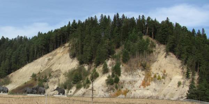 «Юго – западному склону «горы «Пионерской» -  статус регионального памятника природы!»