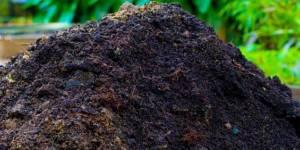 Утилизация навоза переработкой его в удобрения
