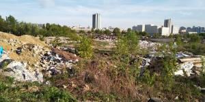 Эксперты ОНФ в Москве обратились в префектуру Западного округа с просьбой ликвидировать свалку строительных отходов