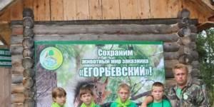 Сохраним редких хищных птиц Егорьевского заказника