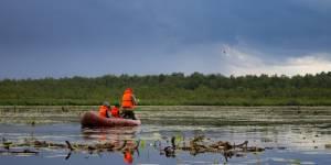 О редких водных растениях Правобережья Оби