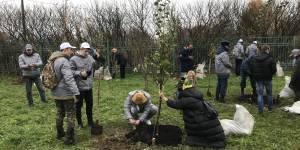 В память о героях спецназа в Москве на Крылатских холмах появится яблоневый сад