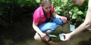 Во Владивостоке продолжает свою работу полевой экологический практикум для школьников