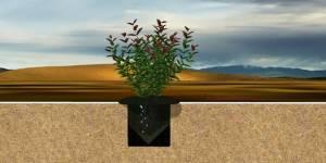 Защита земель от ветровой эрозии