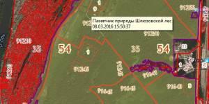 Биологи исследуют Шлюзовской лесоболотный комплекс в Новосибирске