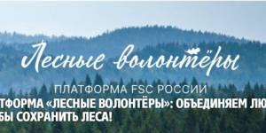 Волонтеры - на защите леса