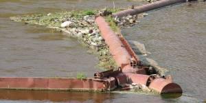 Молодежное движение в защиту водных объектов «Голубая лента»